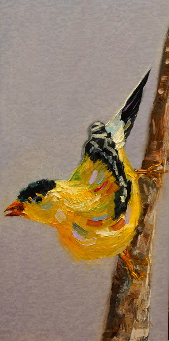 """ARTOUTWEST DIANE WHITEHEAD YELLOW FINCH Bird art Oil Painting"" original fine art by Diane Whitehead"
