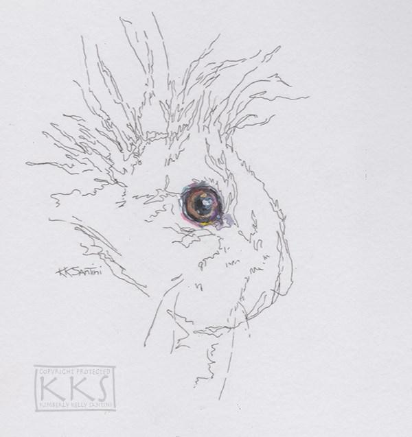 """Lionhead"" original fine art by Kimberly Santini"