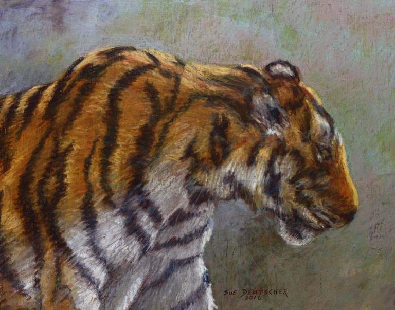"""""""Tiger"""" original fine art by Sue Deutscher"""
