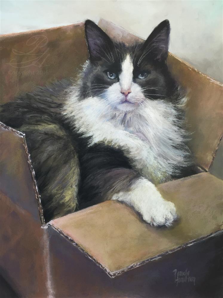"""Cat in the Box"" original fine art by Pamela Hamilton"
