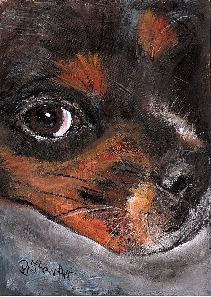 """5x7 King Charles Cavalier Spaniel Puppy Dog Pet Portrait Cute Pup Acrylic Penny Lee StewArt"" original fine art by Penny Lee StewArt"