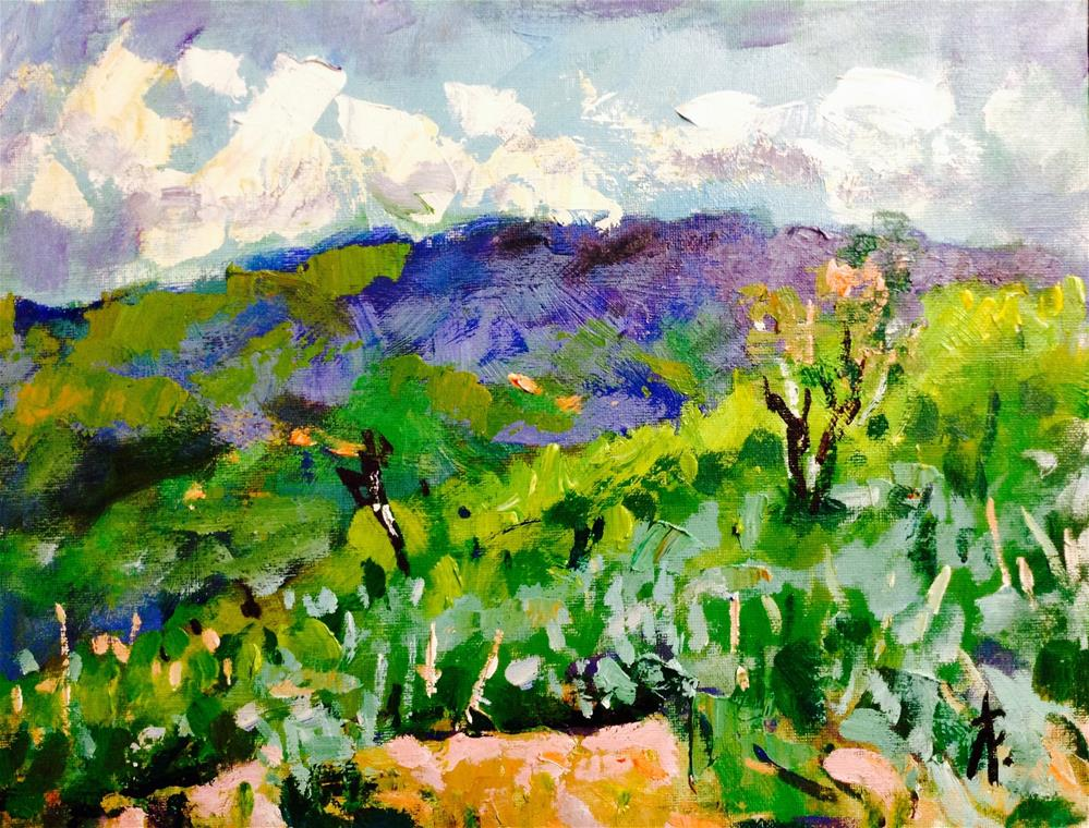 """The. Hills above Salt Lake"" original fine art by Andre Pallat"
