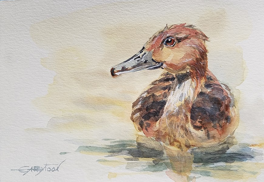 """Swimming Duck"" original fine art by Gabriella DeLamater"