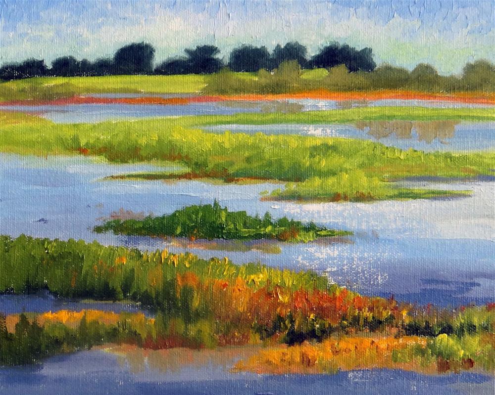 """Katy Prairie Pond"" original fine art by Nancy Paris Pruden"