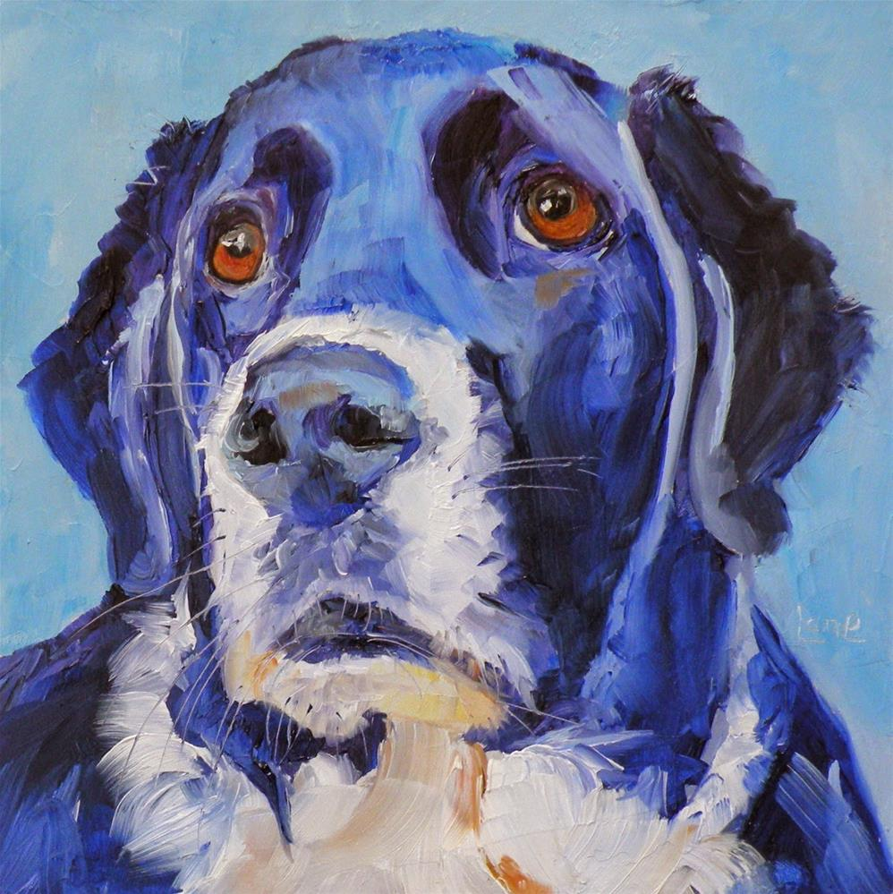"""AMOS 60/101 OF 101 PET PORTRAITS IN 101 DAYS © SAUNDRA LANE GALLOWAY"" original fine art by Saundra Lane Galloway"
