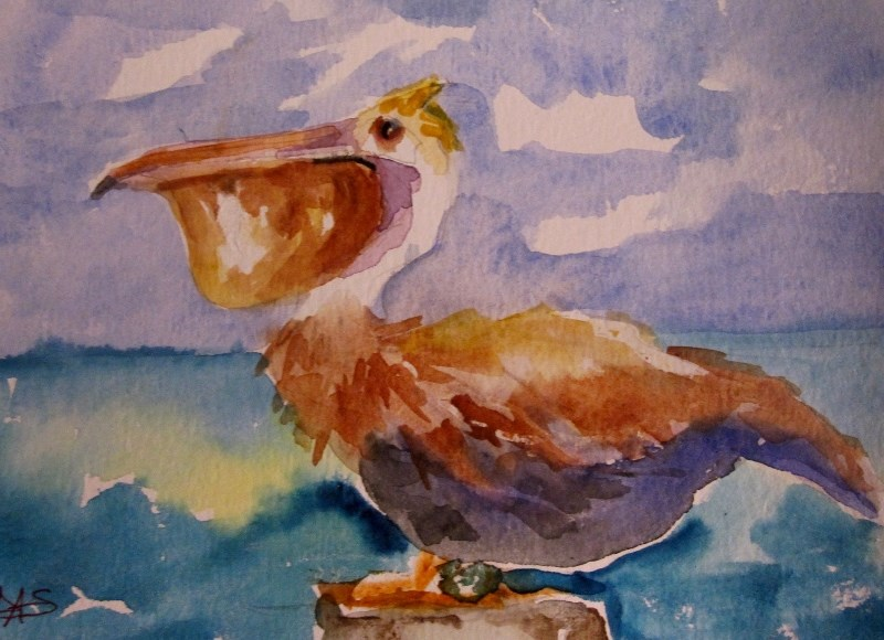 """Pelican"" original fine art by Delilah Smith"