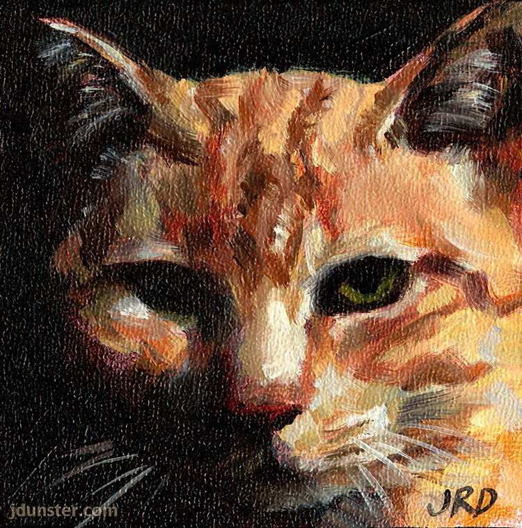 """Barn Cat Head"" original fine art by J. Dunster"
