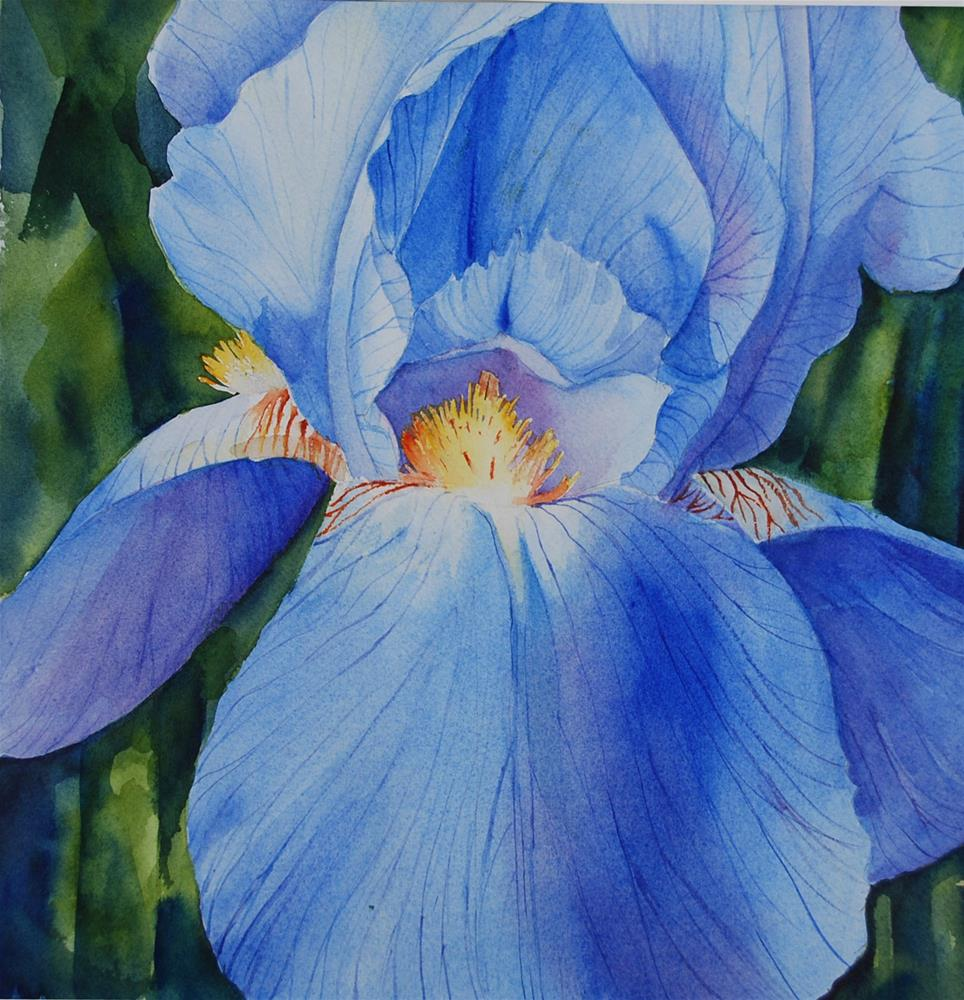 """Blue Iris"" original fine art by Mary Anderson"