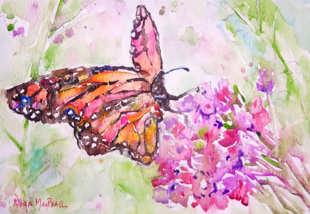 """National Butterfly Awareness Day"" original fine art by Nora MacPhail"