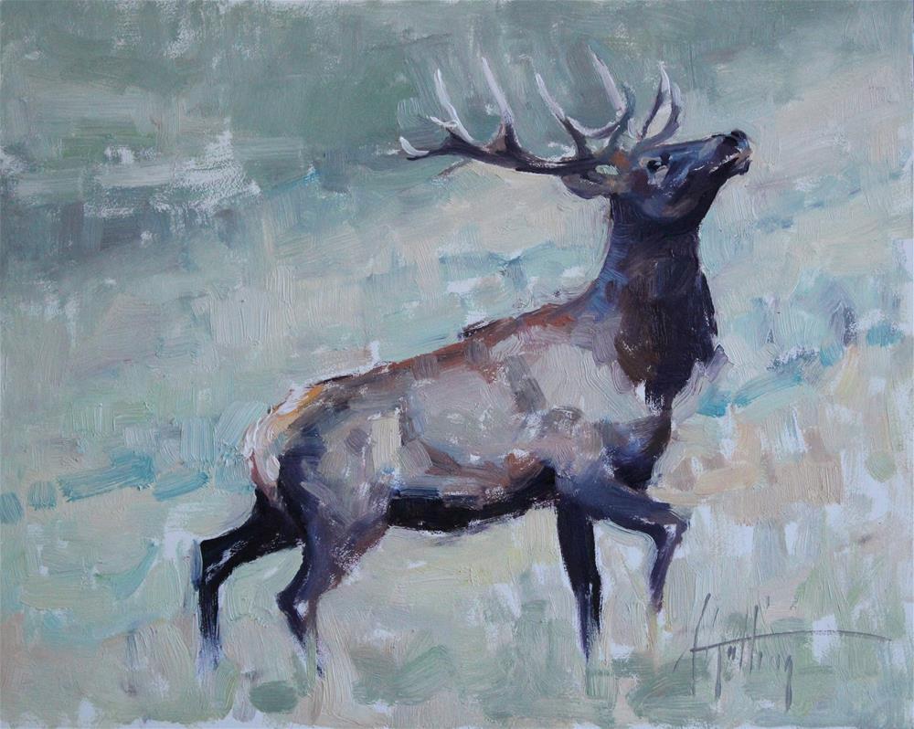 """Elk Study #2"" original fine art by Abigail Gutting"