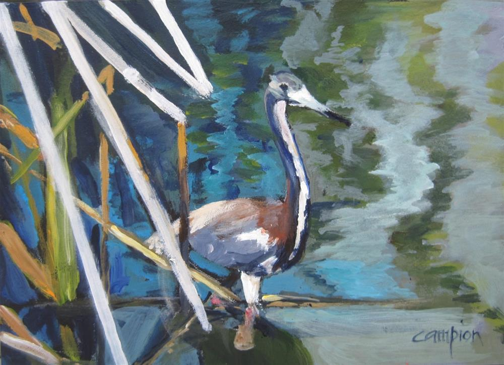 """Great Blue Heron"" original fine art by Diane Campion"