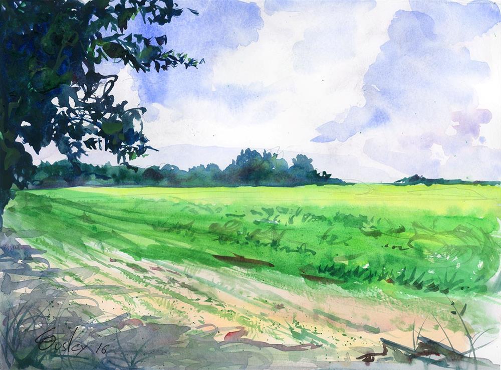"""Soy Crop in Lavergne"" original fine art by Chris Ousley"