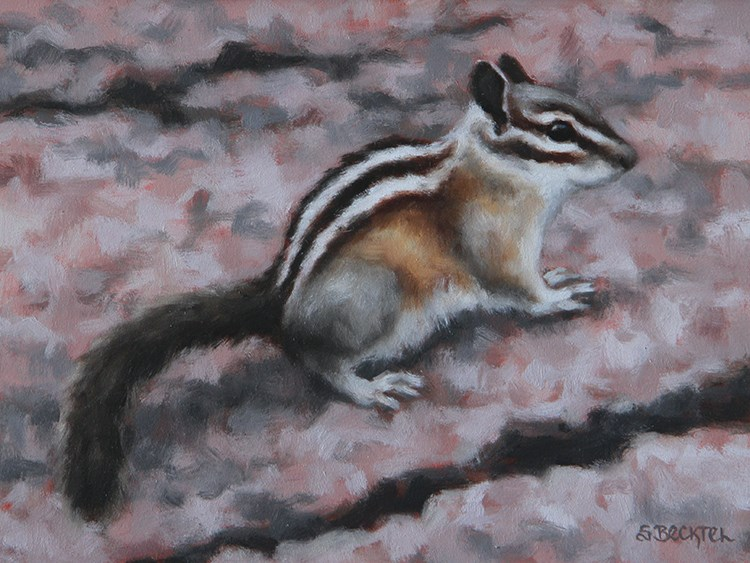 """""""Western Chipmunk II"""" original fine art by Sarah Becktel"""