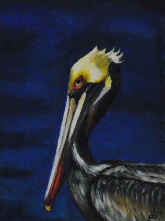 """Pelican"" original fine art by Kim Selig"