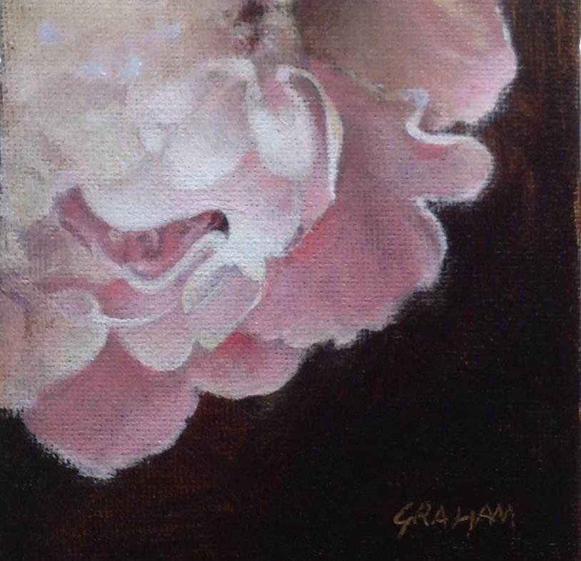 """Pink Peony"" original fine art by Stuart Graham"