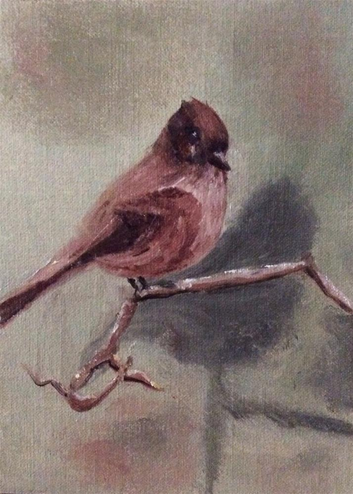 """Eastern Phoebe"" original fine art by Charlotte Lough"