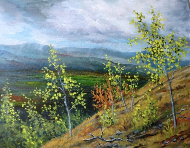 """View of the Thomas Creek Valley"" original fine art by Jackie Irvine"