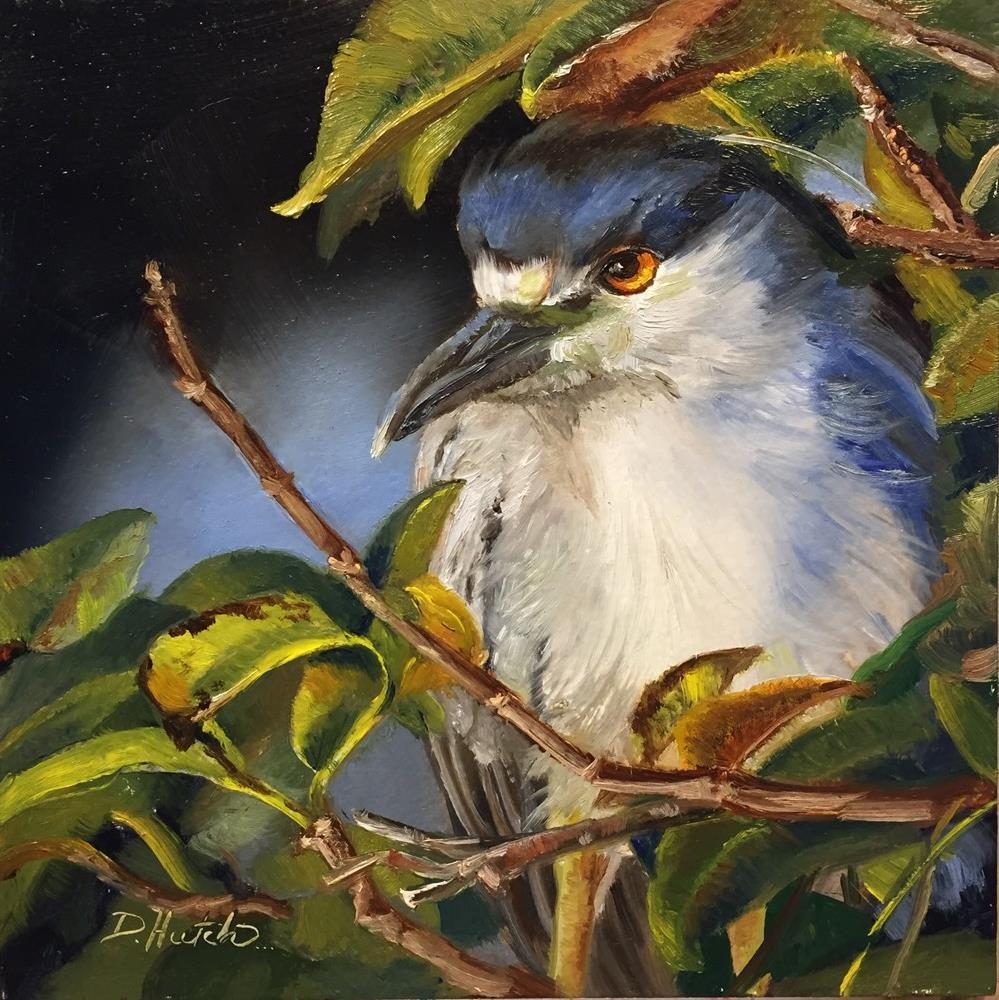 """Black Crested Night Heron"" original fine art by Diane Hutchinson"