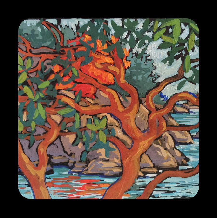 """3.09 Berry Point Arbutus"" original fine art by Jan Poynter"