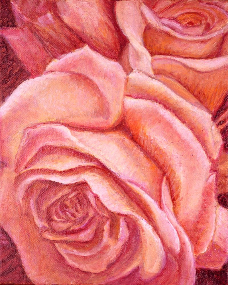 """Coral Rose"" original fine art by Carol Sakai"