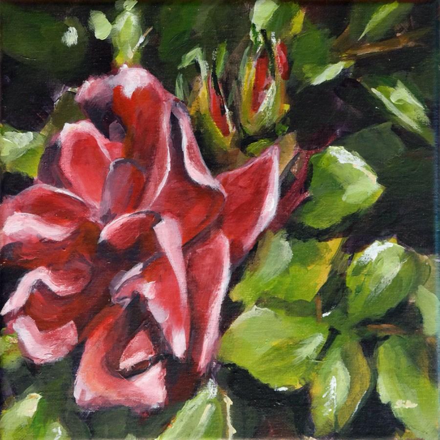 """1415 Dog Rose"" original fine art by Dietmar Stiller"