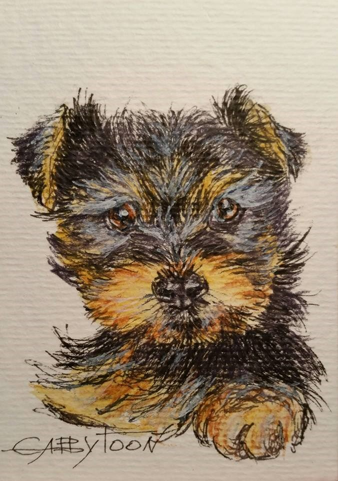 """Puppy (ACEO)"" original fine art by Gabriella DeLamater"