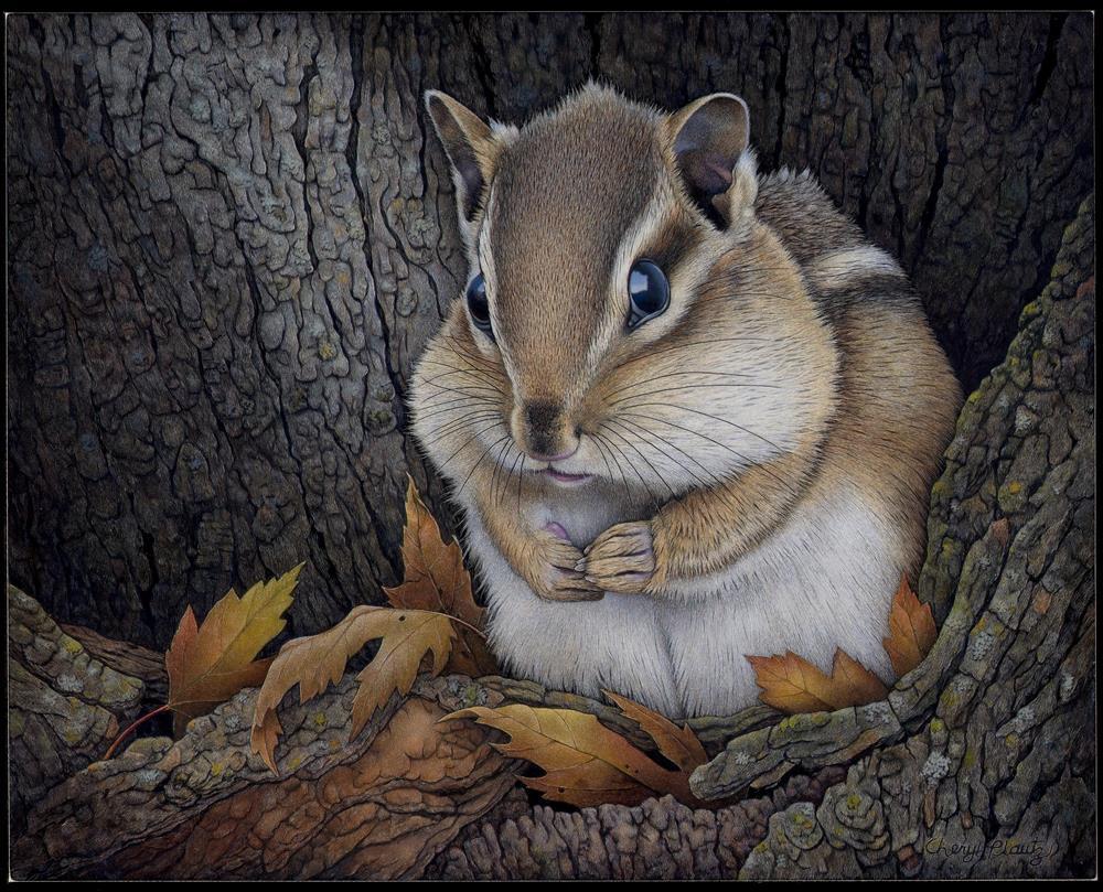 """Chippy"" original fine art by Cheryl Plautz"