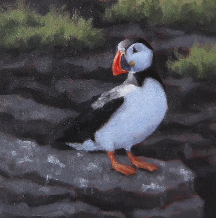 """Atlantic Puffin I"" original fine art by Sarah Becktel"