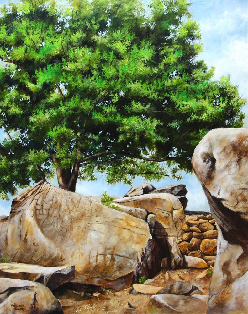 """Devil's Den Witness Tree"" original fine art by Aaron Grabiak"