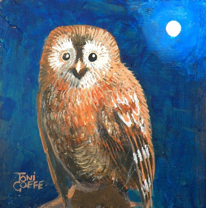 """Tawny Owl"" original fine art by Toni Goffe"