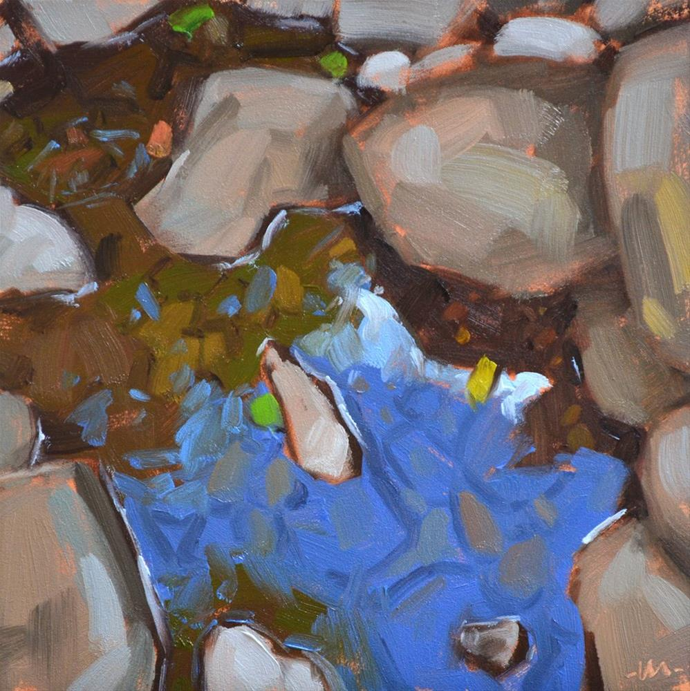 """Rocks Water Rocks"" original fine art by Carol Marine"