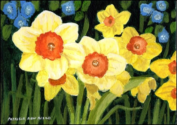 """Pretty Daffodils"" original fine art by Patricia Ann Rizzo"