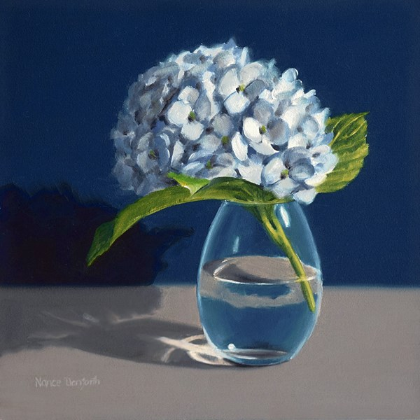 """Hydrangea on Blue"" original fine art by Nance Danforth"
