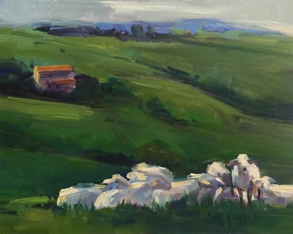 """""""Shorn Sheep"""" original fine art by Patti McNutt"""