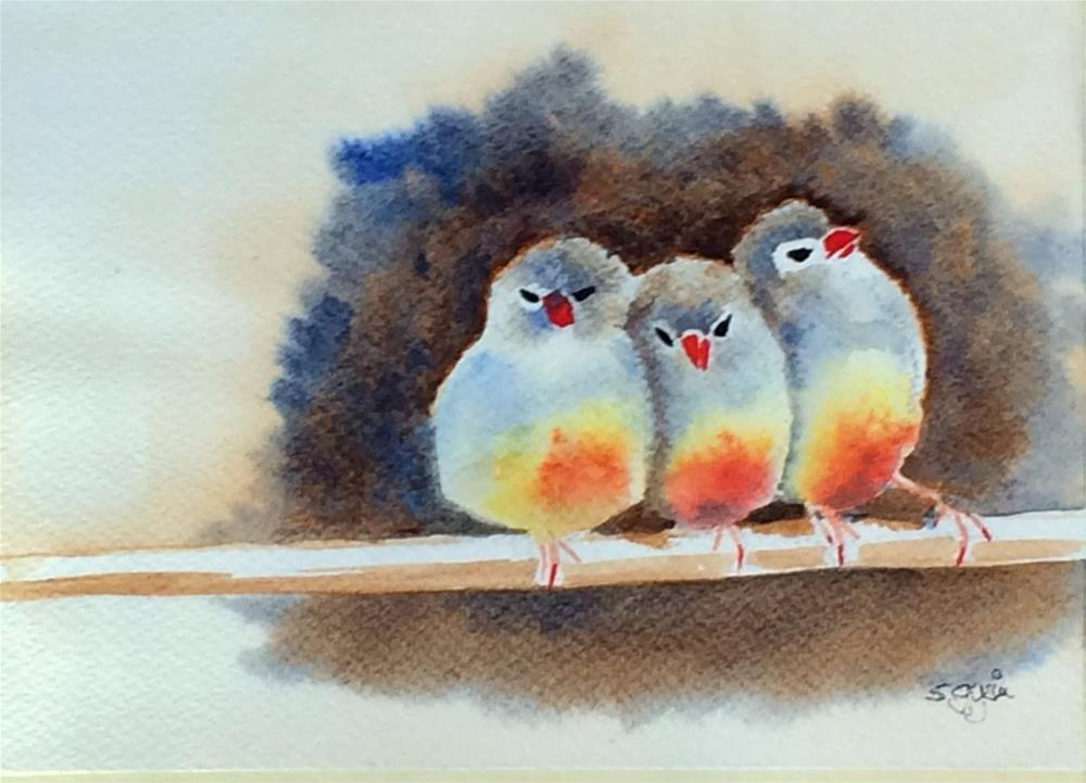"""""""Sweet to tweet"""" original fine art by Suzanne Gysin"""