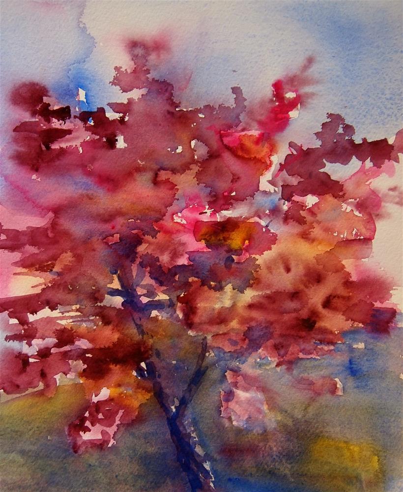 """Japenese Maple"" original fine art by Amy Bryce"