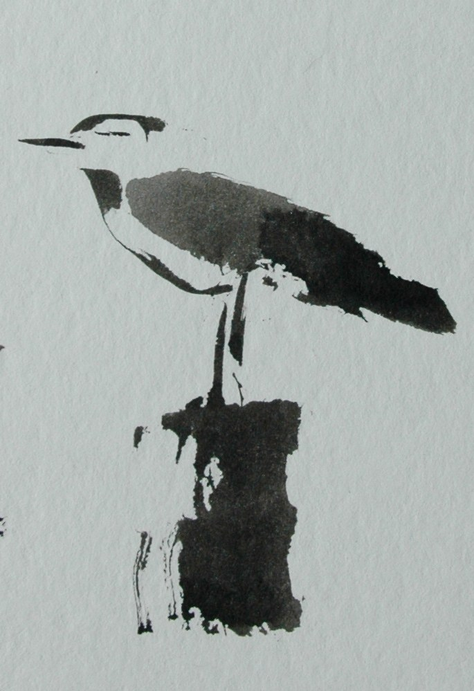"""Seagull"" original fine art by Ulrike Schmidt"