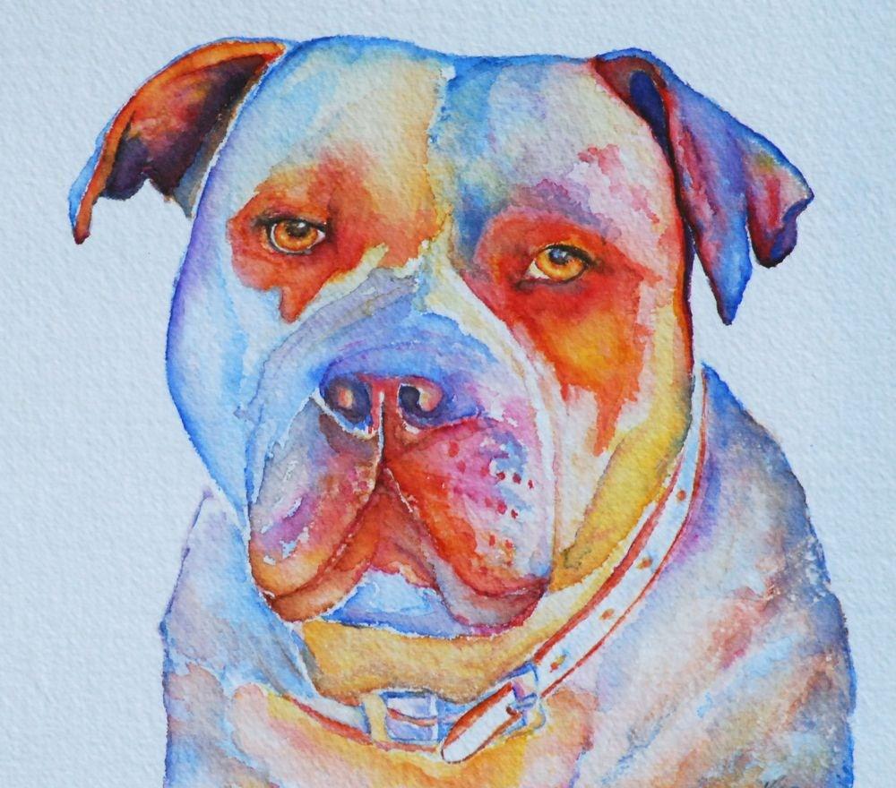"""Yogi"" original fine art by Vicki Wood"