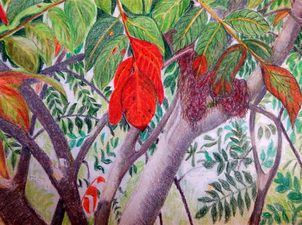 """First Red Leaf of Fall"" original fine art by Elaine Shortall"