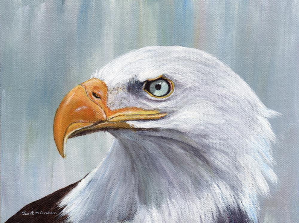 """Bald Eagle 2"" original fine art by Janet Graham"