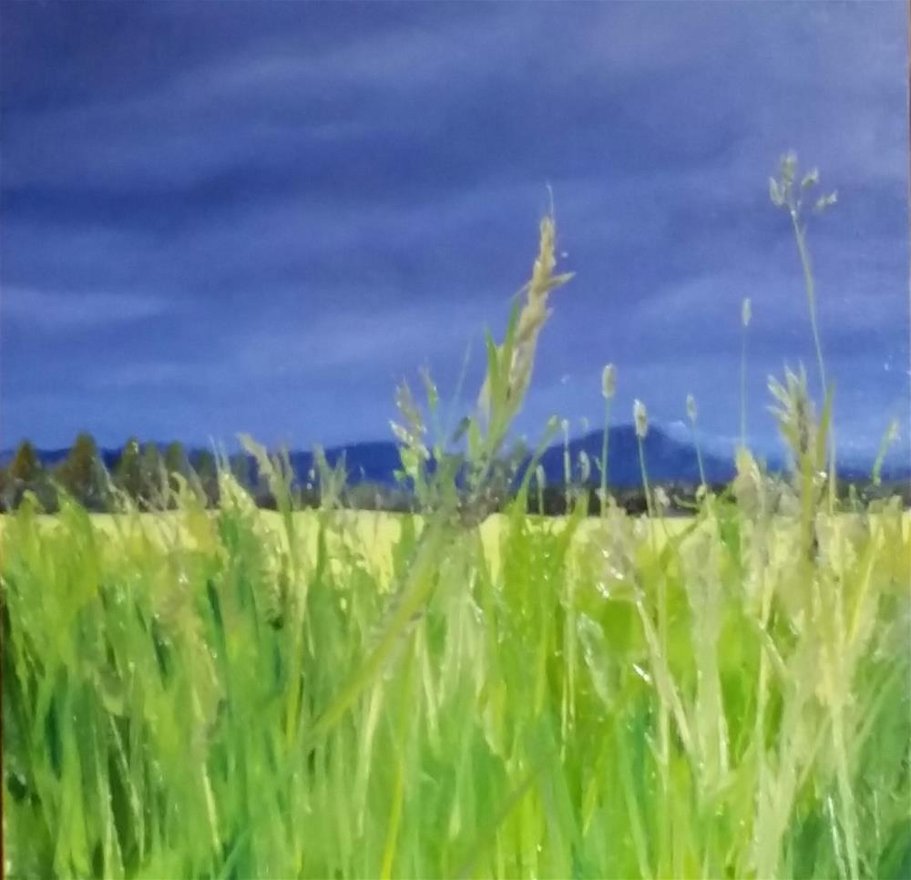 """Hunters Field"" original fine art by Kim Homes"
