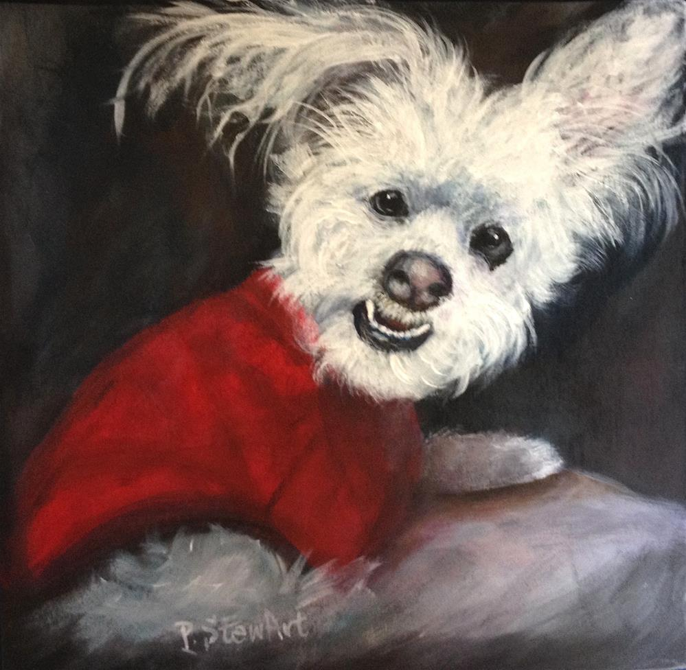 """10x10 Fluffy White Dog with Toothy Grin, Acrylic on Wood Original Penny StewArt"" original fine art by Penny Lee StewArt"