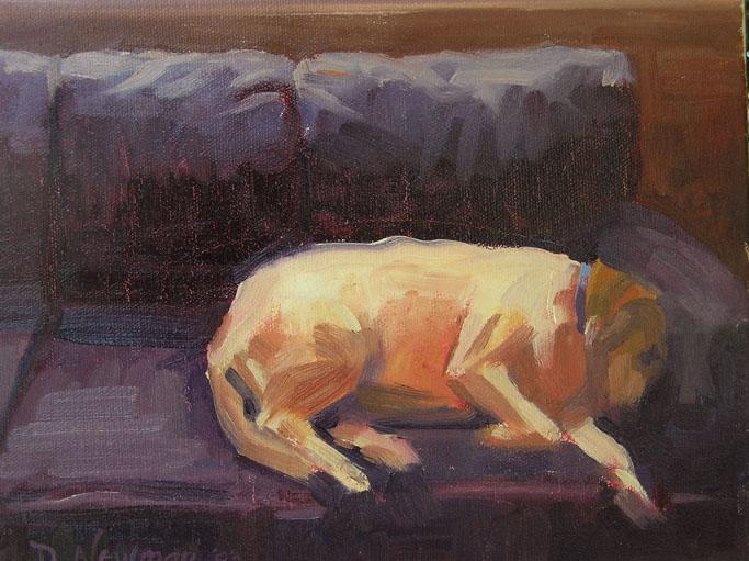 """Siesta"" original fine art by Deborah Newman"