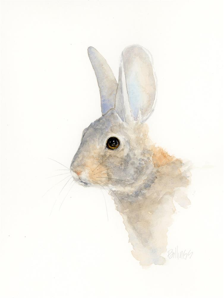 """Cottontail Study VIII"" original fine art by Susanne Billings"