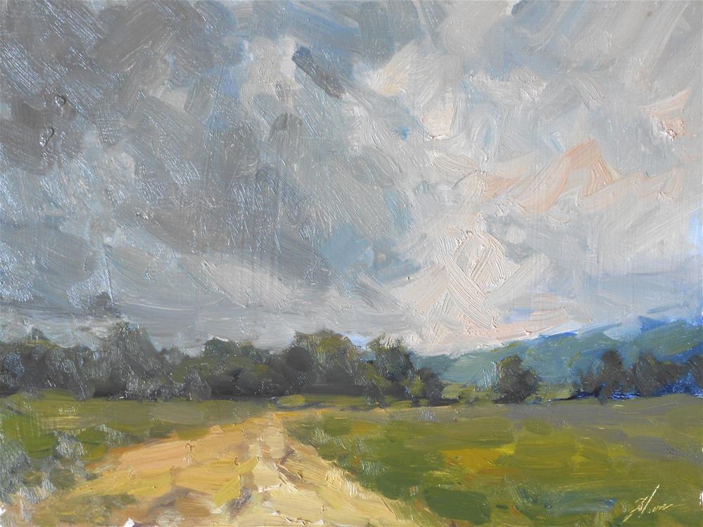 """""""Stormy Fields"""" original fine art by Kelli Folsom"""