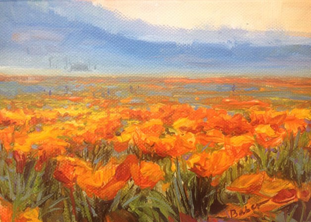 """Lancaster Poppy Fields Study"" original fine art by gabriele baber"