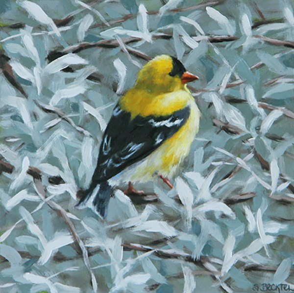 """American Goldfinch"" original fine art by Sarah Becktel"