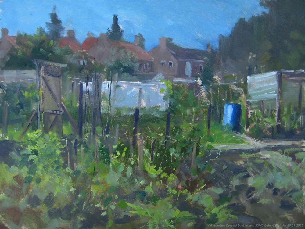 """I love alotments. Doetinchem, The Netherlands"" original fine art by René PleinAir"