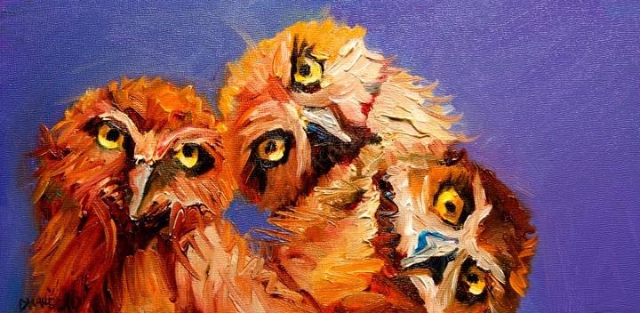 """""""ARTOUTWEST OWL STUDY Diane Whitehead fine art oil painting animal"""" original fine art by Diane Whitehead"""