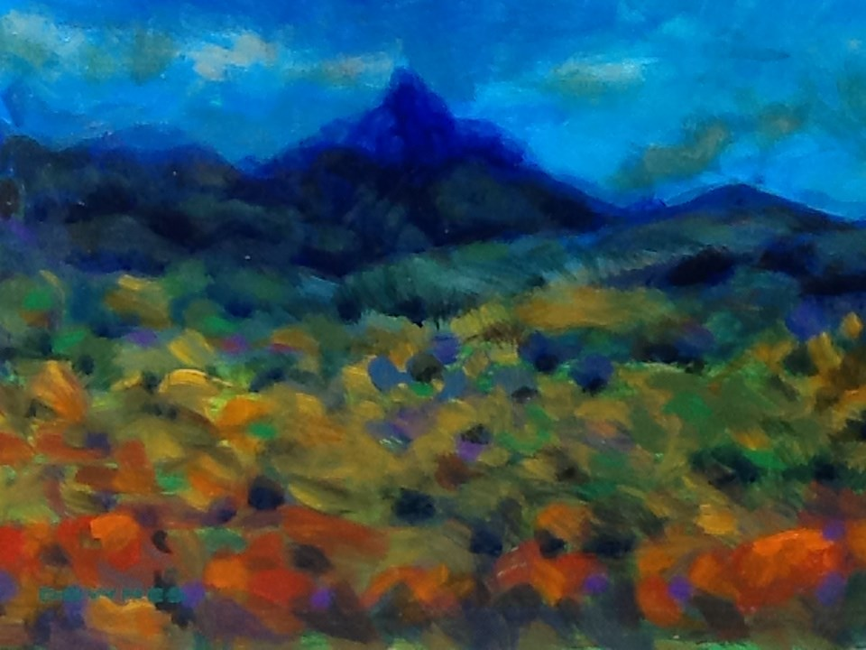 """093 MOUNT WARNING 26"" original fine art by Trevor Downes"